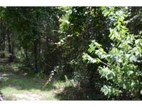 Home for sale: 3911 N. Indianriver Dr., Hernando, FL 34442