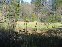 Home for sale: Johnson Ranch Rd., Oak Run, CA 96069