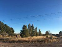 Home for sale: 600 E. Salgado St., Marfa, TX 79843
