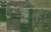 Home for sale: N.W. Martin Sewell Rd., Altha, FL 32421
