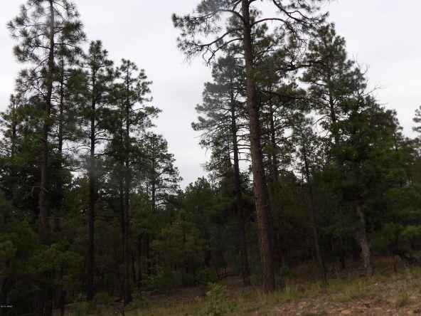 2125 S. Pleasant View Dr., Show Low, AZ 85901 Photo 5