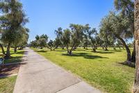 Home for sale: 3146 E. Monterosa St., Phoenix, AZ 85016