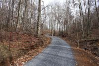 Home for sale: Tbd Buckeye Hollow Rd., Saltville, VA 24370