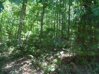 Home for sale: 0 Doe Run Rd., Tignall, GA 30668