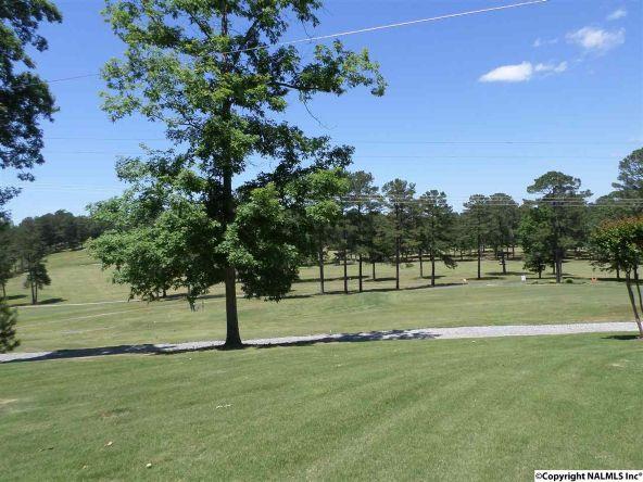 175 County Rd. 453, Centre, AL 35960 Photo 31