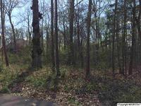 Home for sale: Lot #13 Woodland Terrace, Moulton, AL 35650