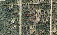 Home for sale: 000 N.E. 105th Avenue, Archer, FL 32618