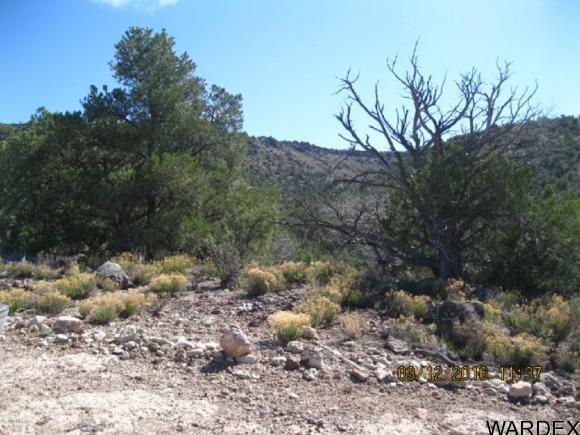 00 N. Willows Ranch Rd., Kingman, AZ 86401 Photo 2