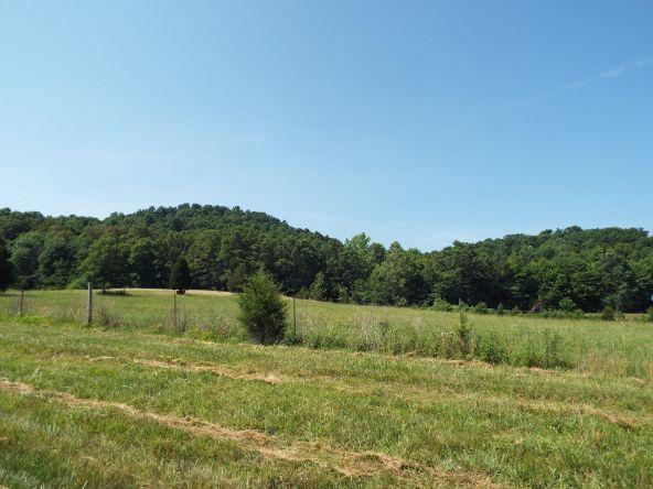 565 Cat Hollow Rd., Elk Horn, KY 42733 Photo 26