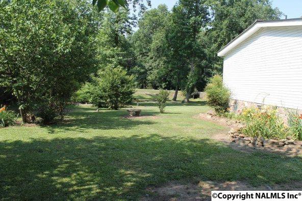 1210 County Rd. 23, Geraldine, AL 35974 Photo 36