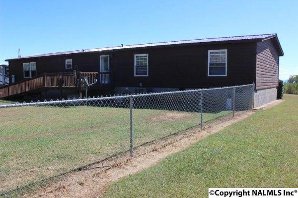 381 Rd. 1913, Cedar Bluff, AL 35959 Photo 11