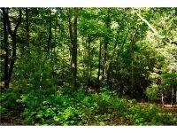 Home for sale: 118 Powder Creek Trail, Arden, NC 28704
