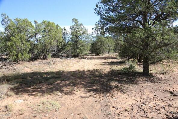 3311 Homestead Rd., Overgaard, AZ 85933 Photo 33