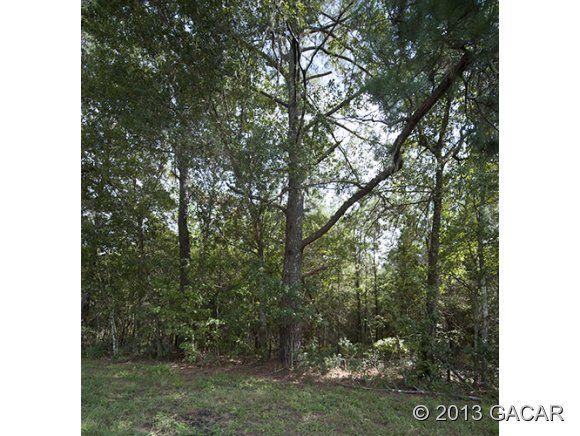 1675 N.E. 156 Avenue, Gainesville, FL 32609 Photo 2