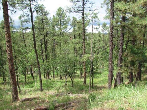 119 del Monte Dr., Alto, NM 88312 Photo 7
