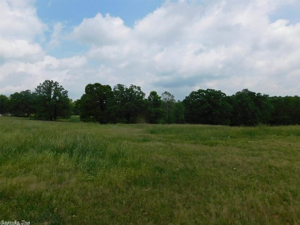 1745 French Town Rd., Camp, AR 72520 Photo 4