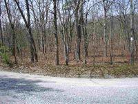 Home for sale: Lot 35 Blueberry Dr., Elkton, VA 22827