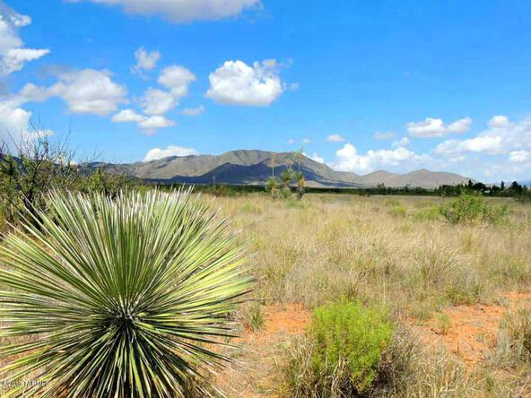 1 Lot On Havasu Way & Palm, Cochise, AZ 85606 Photo 10