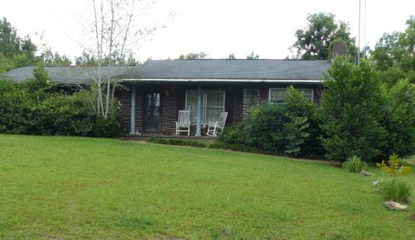 1001 Chestnut Rd., Slocomb, AL 36375 Photo 1