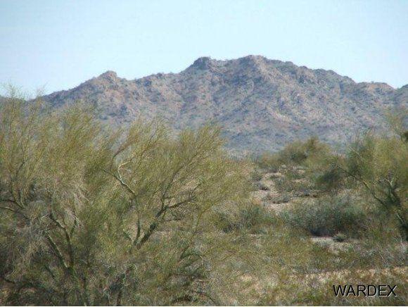 16775 S. Douglas Ln., Yucca, AZ 86438 Photo 5