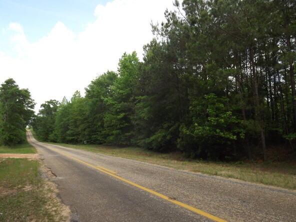 30acres County Rd. 31, Abbeville, AL 36310 Photo 1