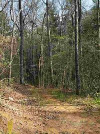Home for sale: 629 Land Bridge Rd., Mountain Rest, SC 29664