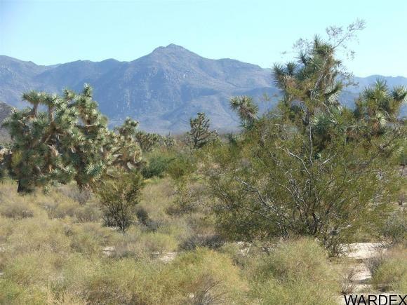 1752 E. Boriana Mine Rd., Yucca, AZ 86438 Photo 2