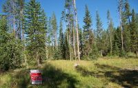 Home for sale: Lot 15 Stanley Basin Sub, Stanley, ID 83278