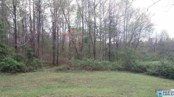 5 Eagles Fair, Glencoe, AL 35905 Photo 6