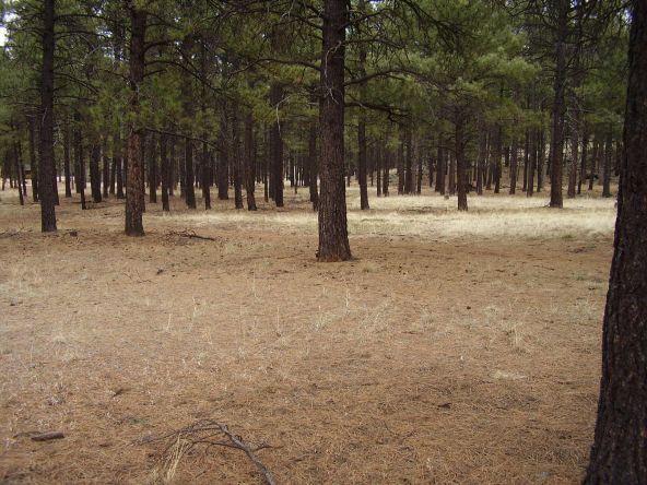 2750 N. Jason Way, Flagstaff, AZ 86001 Photo 2