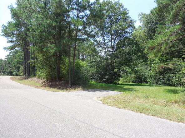 4 Acres Quail Dr., Dothan, AL 36301 Photo 6