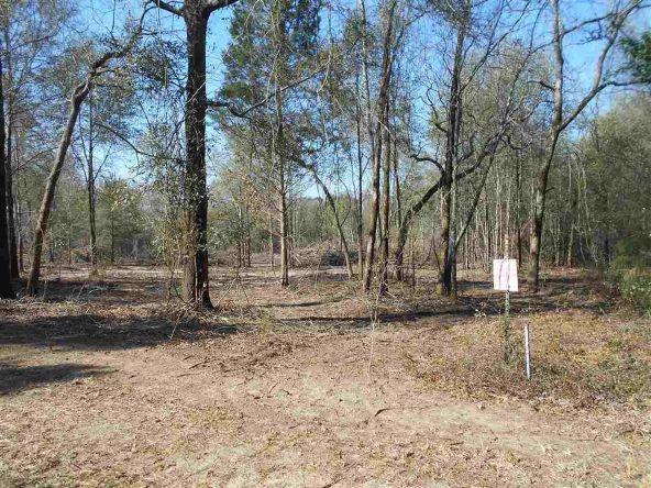 16.9 Acres Private Rd. 1363, Ariton, AL 36311 Photo 21
