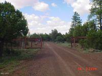 Home for sale: 013d N. Mountain Creek Trail, Lakeside, AZ 85929