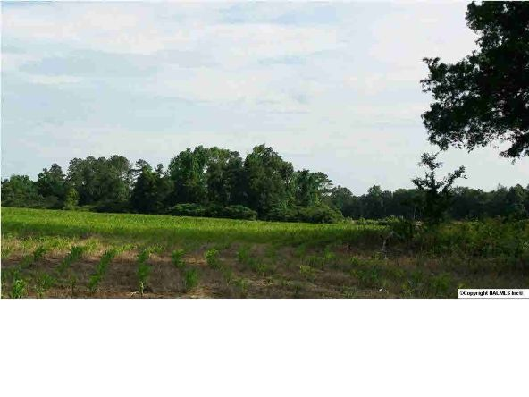 6 County Rd. 395, Section, AL 35771 Photo 4