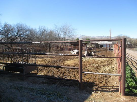 54 Frontage Rd., Duncan, AZ 85534 Photo 7