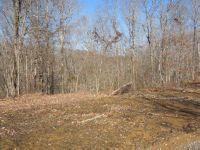 Home for sale: 12 .99 Ac. Thunder Bay Trail, Burkesville, KY 42717