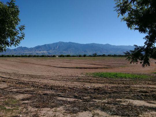 6685 W. Oak Ln., Pima, AZ 85543 Photo 14