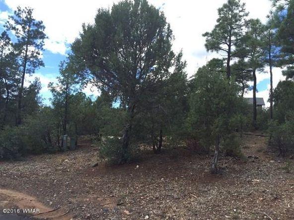800 E. Pine Oaks Dr., Show Low, AZ 85901 Photo 2