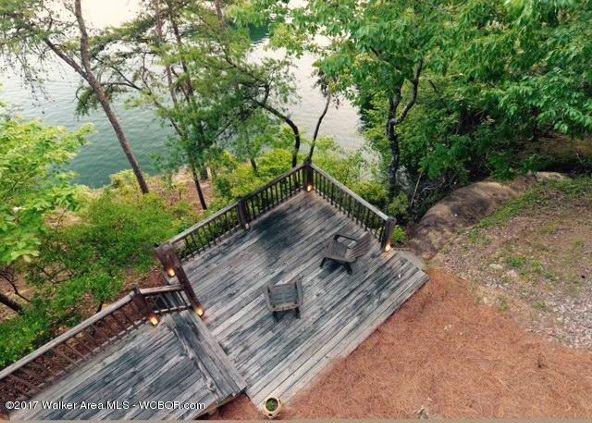 1523 Sipsey Pines Rd., Arley, AL 35541 Photo 3