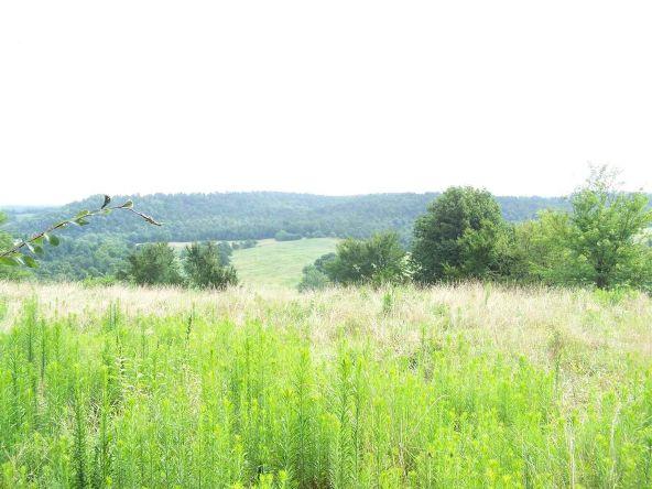 2000 Cedar Park Rd., Viola, AR 72583 Photo 1
