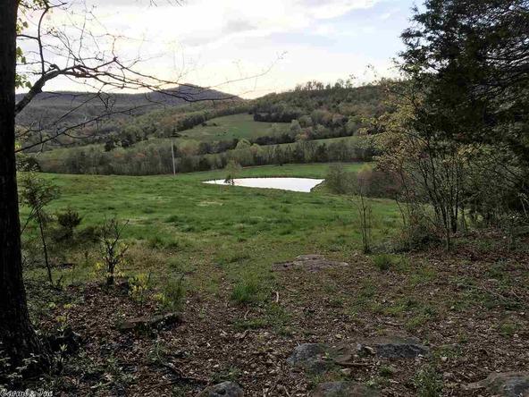 1252 Nc 3600 Rd., Western Grove, AR 72685 Photo 12