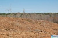 Home for sale: Co Rd. 92, Newell, AL 36280