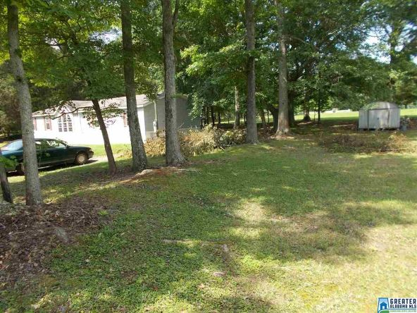234 Simpson Rd., Odenville, AL 35120 Photo 42