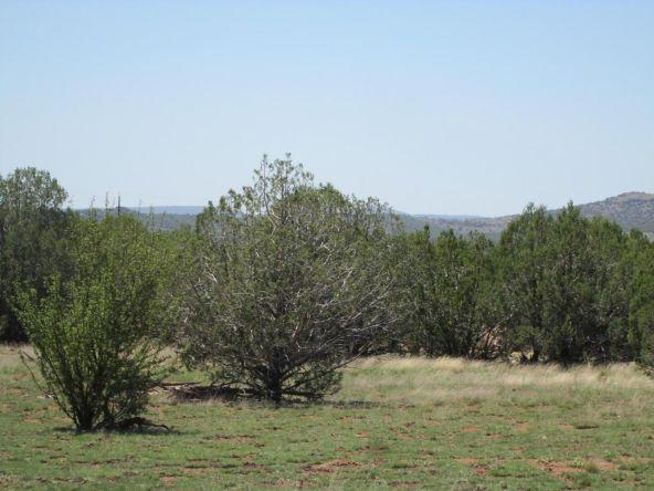 3328 N. Hillside Rd., Ash Fork, AZ 86320 Photo 39