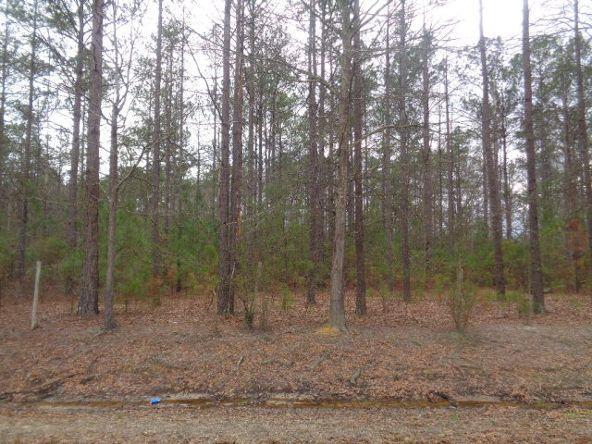 14.34+/- 186 Woodley Spur, Ramer, AL 36069 Photo 11