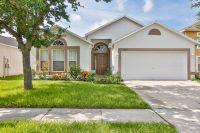 Home for sale: 10119 Maronda Dr., Riverview, FL 33578