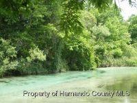Home for sale: 7032 River Run Blvd., Weeki Wachee, FL 34607