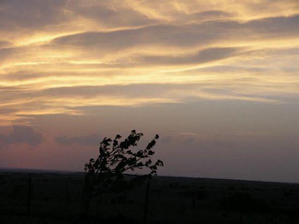 0000 Cleburne Hwy., Cresson, TX 76035 Photo 3
