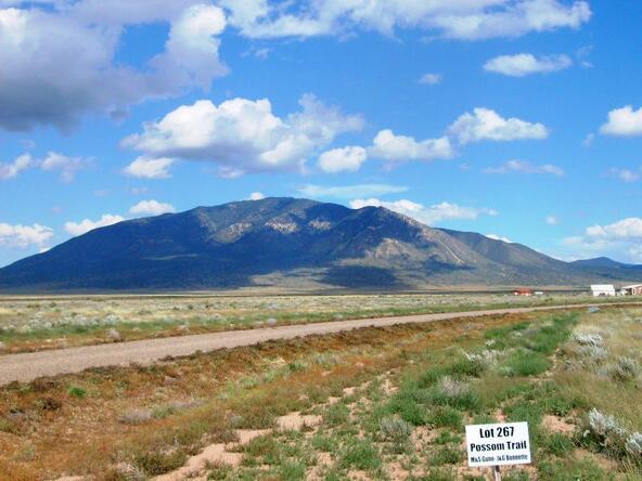 L267 Possum Trail, Carrizozo, NM 88301 Photo 13