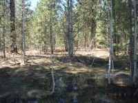 Home for sale: Tract 38 Primrose Ln., Placerville, ID 83631
